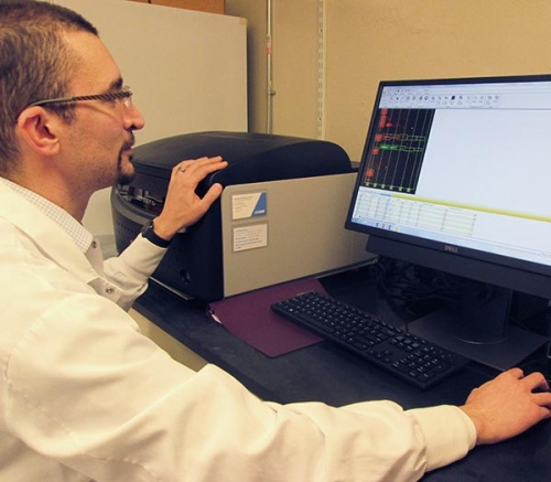 Postdoctoral fellow, Steve Artim analyzing specific protein targets detected by quantitative Western blotting.
